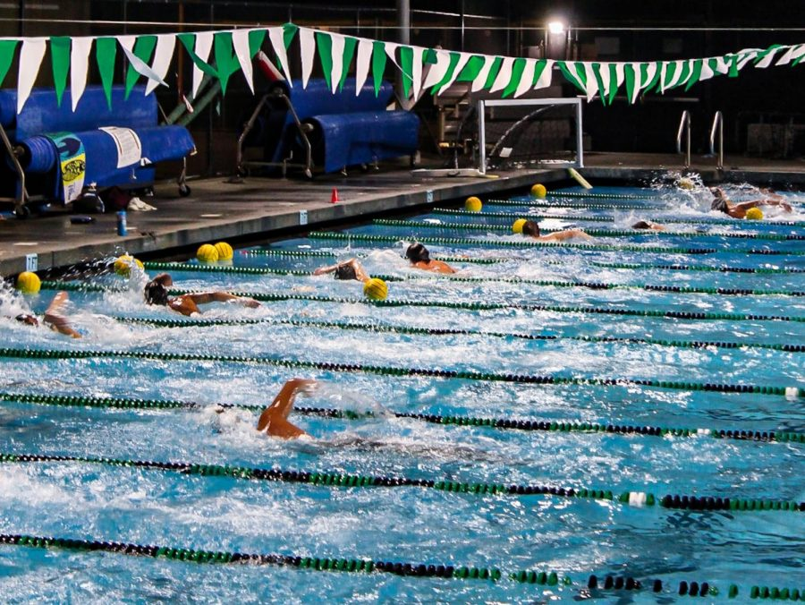 """Boys' varsity water polo team members swim across the pool as fast as they can when Coach Swanson says """"go."""""""