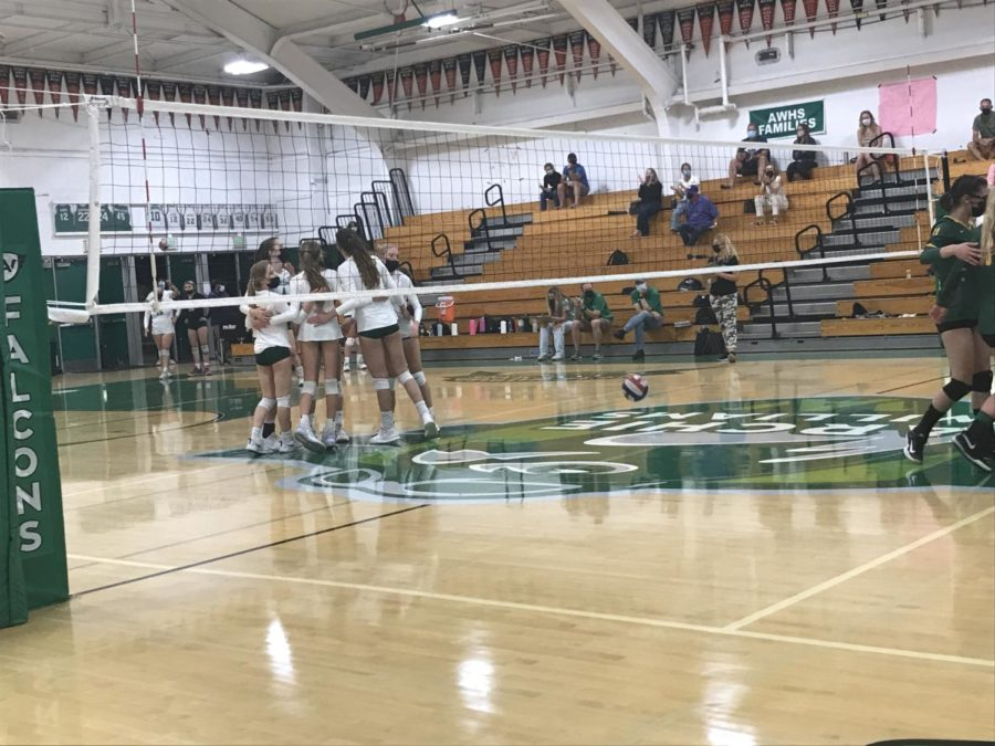 AWHS+varsity+volleyball+celebrating+after+an+ace+by+senior+Ella+Heimbrodt+that+won+them+a+point.