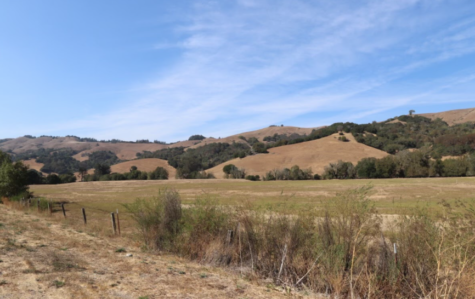 An area of the San Geronimo Valley near Woodacre, made up of dry grassland and forests, which can be fuel for wildfires.