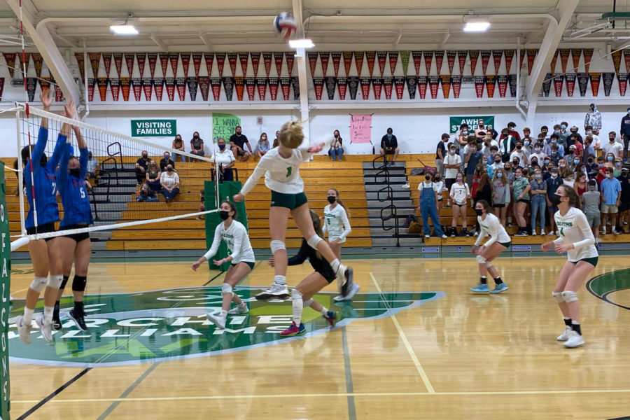 Elsa Snipes spikes the ball, scoring a point for AWHS.